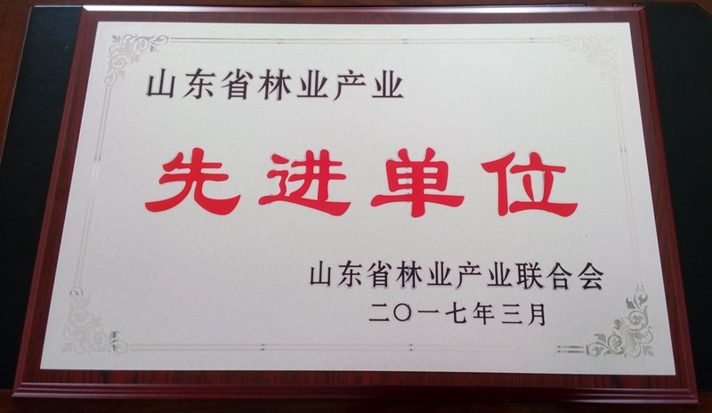 山东省林业产业 先进单位.jpg